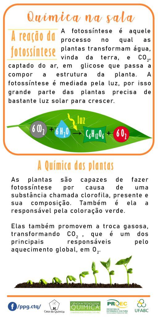 flyerplanta